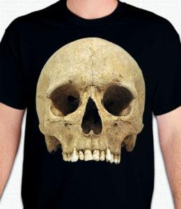GSP-N0059-Skull-metopique